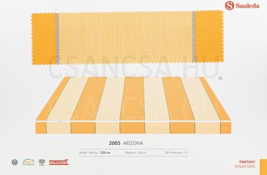 2005 Arizona